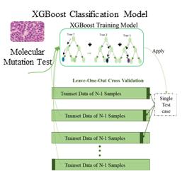 classification architecture