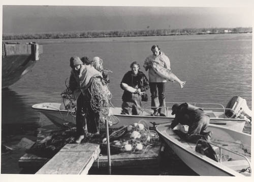 Oceanography Students Catching Fish, circa 1980-1989